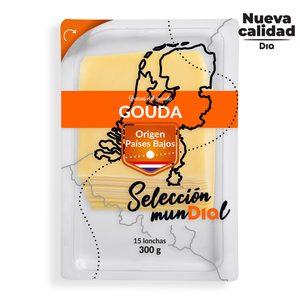 DIA SELECCIÓN MUNDIAL queso gouda en lonchas sobre 300 gr