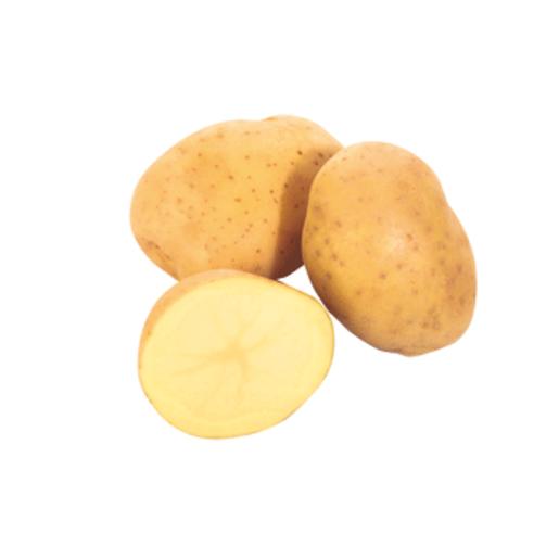 Patata unidad (550 gr aprox.)