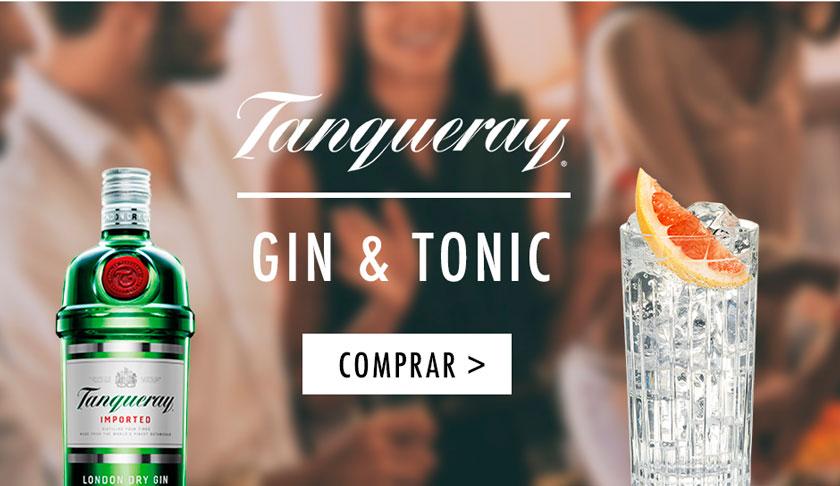 Compra online en DIA Tanqueray y prepara un Gin Tonic con esta receta