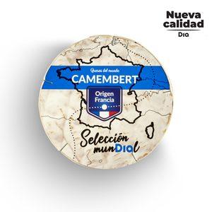 DIA SELECCIÓN MUNDIAL queso camembert envase 250 gr